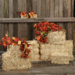 straw bales harvest project