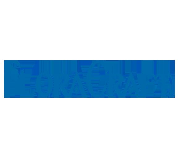 FloraCraft-Blue-Logo